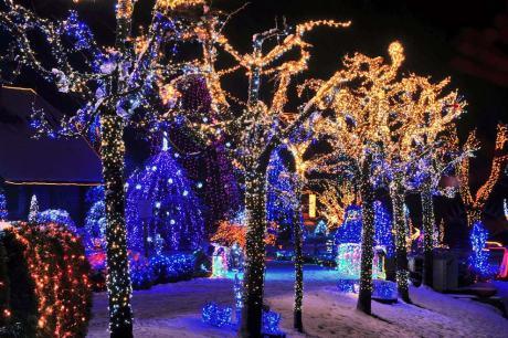 Live Nativity Scene on Family Salaj Estate Grabovnica, Cazma near Zagreb Croatia