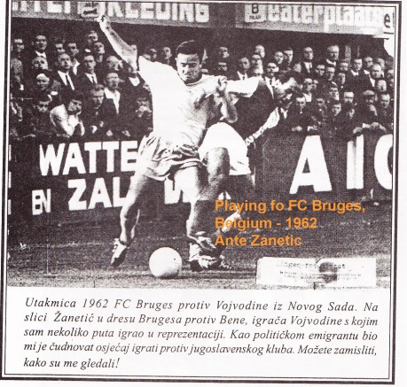Ante Zanetic Bruges