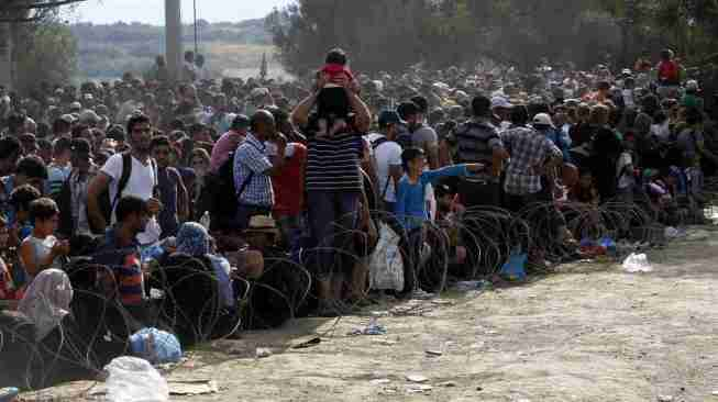 Refugees and illegal migrants reaching border of Macedonia from Greece August 2015