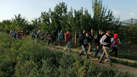 Refugees walk into Croatia from Serbia