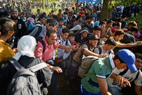 Refugees in Croatia Stampede is on to move on