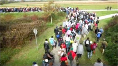 Refugees rushing across green-belts from Croatia into Slovenia 23 October 2015