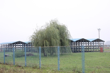 Site planned for refugee camp in Slavonski Brod Croatia near the building that's being prepared